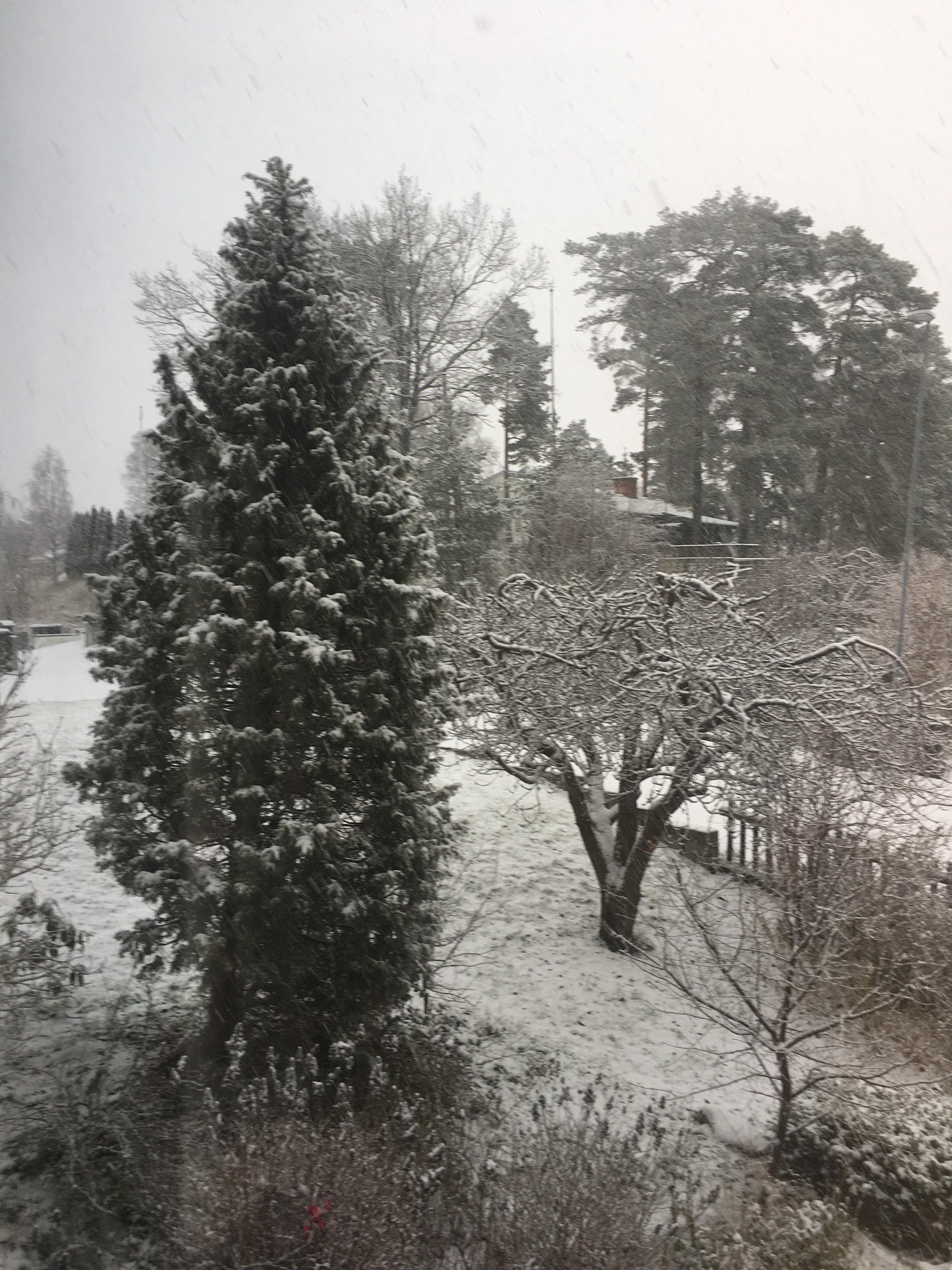 Det snöar idag längdskidåkning nästa