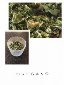 Read more about the article Oregano